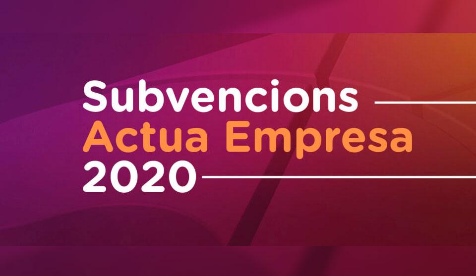 Subvencions 2020